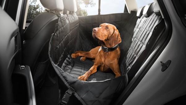 Fondschutzdecke für Rücksitzbank Hundedecke Original Audi Universal 8X0061680A